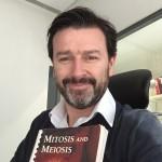Helder_mitosis